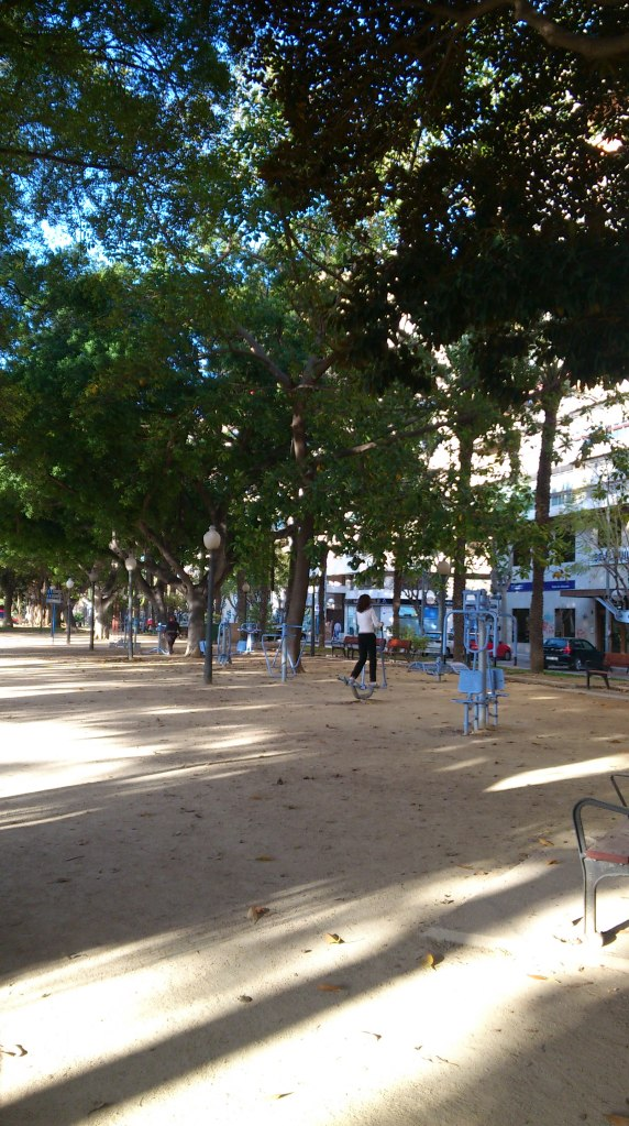 Alicante_gyminthepark